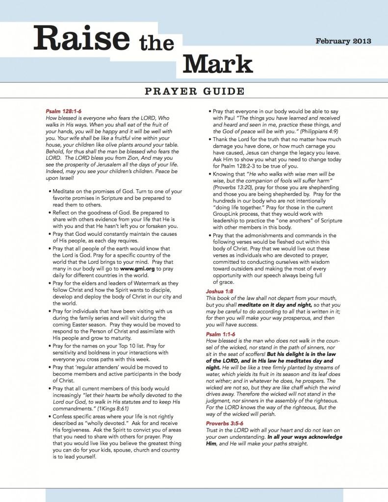 raise-the-mark-feb-2013